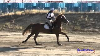 076XC Meika Decher on Touche' par le Feu Open Training Cross Country FCHP April 2015
