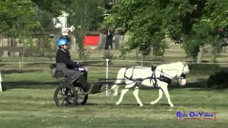 026D Pricilla Smedly Training Single VSE Dressage Clay Station CDE June 2015