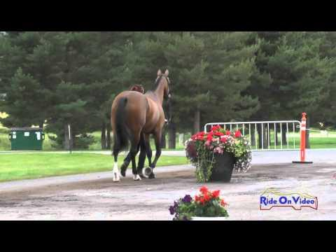 011J2 Erin Serafini On Another Star CCI1* FEI Jog 2 The Event At Rebecca Farm July 2015