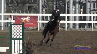 018S Maddy Mazzola Open Preliminary Show Jumping Fresno County Horse Park Oct 2014