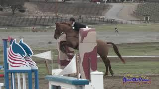 067S Sara Sellmer on Curra Cooley Open Preliminary Show Jumping Twin Rivers Ranch March 2018