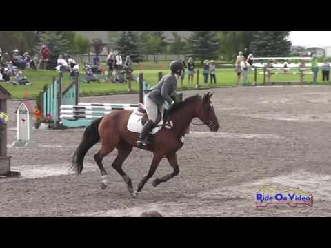 470S Elaine Coller On Cassondra Z SR Open Novice Show Jumping Rebecca Farm July 2016