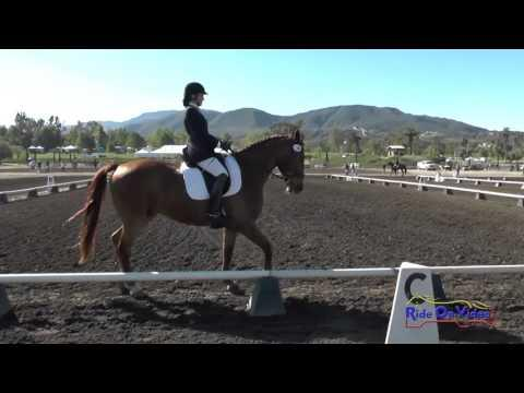 158D Tristen Hooks On Learning To Fly Preliminary Rider Dressage Galway Downs April 2016