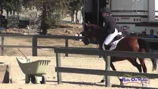 044S Kelcie Rosendahl on Merry CIC1* Show Jumping Woodside Int'l Event Oct 2014