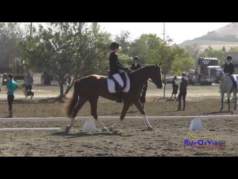 099D Brianna Maroney On Herbie's Gold JR Training Dressage Twin Rivers Ranch Sept. 2016