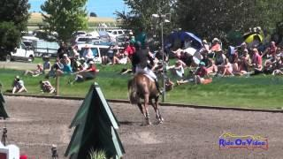 072S Matthew Brown on Super Socks BCF CIC 3* Show Jumping The Event at Rebecca Farm July 2014