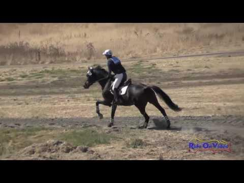 200XC Katrina Moss On Appletini SR Training AM Cross Country Woodside October 2016