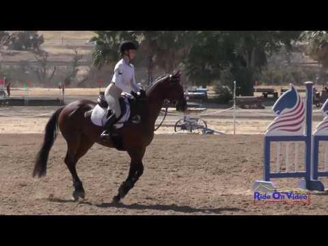 358S Avery McDaniel Beginner Novice CH Show Jumping Twin Rivers Ranch Sept. 2016