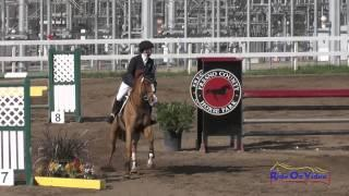 045S Natalie Kuhny on Case Closed II Intermediate Show Jumping FCHP February 2015