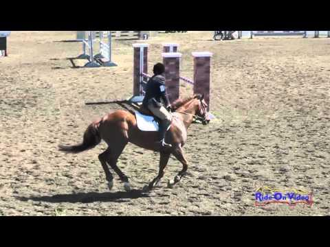 349S Jeff Goodwin On Pendleton Novice Horse Show Jumping Galway Downs April 2016