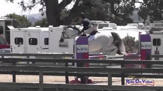 035S Gina Miles on Contalli Di Revel Preliminary Show Jumping Woodside August 2014