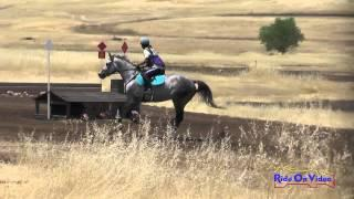 111XC Pam Fisher On Princess Kabbalah Open Beginner Novice Cross Country Camelot July 2015