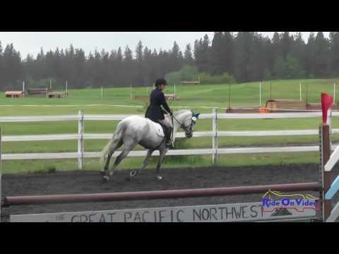 216S Ashleigh Rauen Open Training Show Jumping Spokane Sport Horse HT May 2016