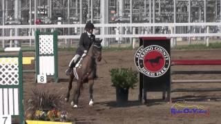042S Bunnie Sexton on Rise Against Intermediate Show Jumping FCHP February 2015