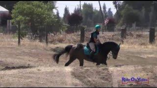 105XC Kathryn Canario on Ringwood Little Imp YR Novice Cross Country FCHP April 2015