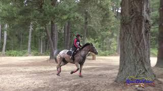 079XC Lisa Schuchman on Paradox Open Training Championships Cross Country Aspen Farms Sept. 2019