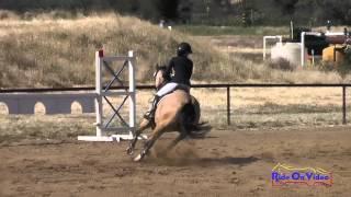 175S Britt Sabbah on Saint Louie SR Training Show Jumping Twin Rivers Ranch April 2015