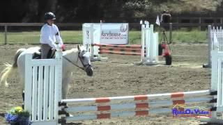 255S Kasey Hansen On Seymour Intro Show Jumping Shepherd Ranch June 2015