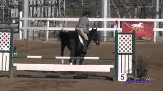 030S Jennifer Winters Preliminary Rider Show Jumping Fresno County Horse Park Oct 2014