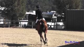 040S Maddy Mazzola on Catch Me If You Can IV CIC1* Show Jumping Woodside Int'l Event Oct 2014