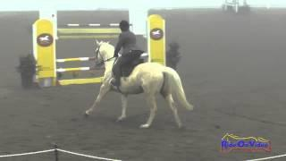 013S Sandy Boling on Star's Southern Charm Beginner Novice Show Jumping FCHP January 2015