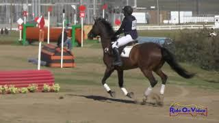 306XC Anna Brostrom on Griffindore Intro Cross Country FCHP February 2018