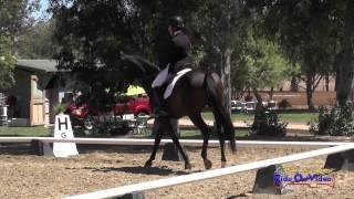 068D Barb Crabo on Lickity Split CIC1* Dressage Copper Meadows September 2014