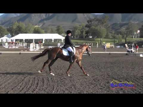 349D Jeff Goodwin On Pendleton Novice Horse Dressage Galway Downs April 2016