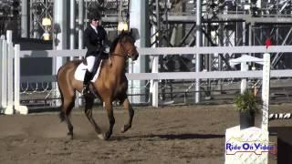 099S Cindy Ramirez Smith on Carina HGF SR Novice Show Jumping FCHP November 2014