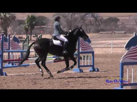 082S Stephanie Nicora On High In The Air Preliminary Rider Show Jumping Twin Rivers Ranch Sept. 2016