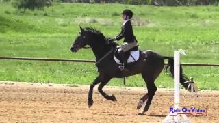 259S Angela Cricelli on Sunsprite's Cali JR Novice Show Jumping Twin Rivers Ranch April 2014