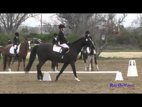 286D Allison Wojslaw On Zanzibar Intro Dressage Twin Rivers Ranch March 2016