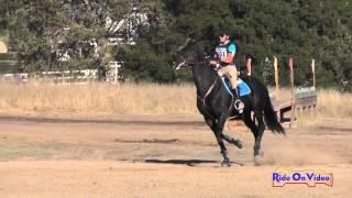 101XC Teralyn Arthur on Pride Preliminary Rider Cross Country Woodside October 2014