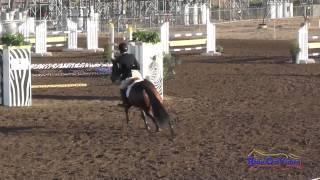 010S Cara Julian on Wunder Schon Intermediate Show Jumping Fresno County Horse Park Oct 2014