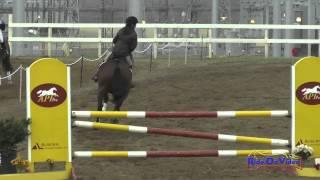 076S Delaney Vaden on RedRox Jazzman Preliminary Show Jumping FCHP January 2015