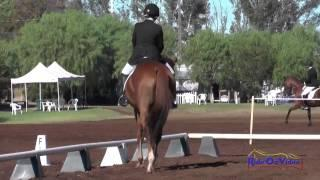149D Laura Hempleman on Escape Velocity Preliminary Rider Dressage Copper Meadows September 2014