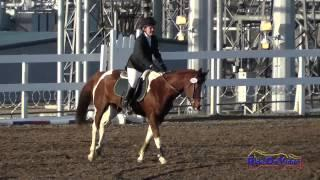 201S Natasha Ramirez on Legend of the Phoenix Intro Show Jumping FCHP November 2014