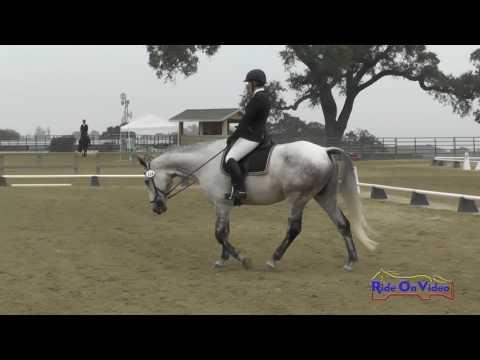114D Mc Kenzie Miller On FIre And Rain SR Training AM Dressage Woodside August 2016