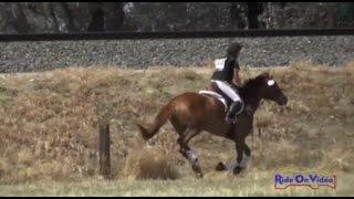 112XC Bella Silveira on Celeste SCF YR Novice Cross Country FCHP April 2015