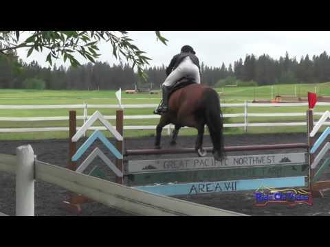 244S Brennan Kappes JR/YR Training Show Jumping Spokane Sport Horse HT May 2016
