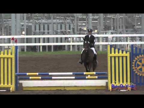 294S Mauri Anderson On Releve' SR Beginner Novice Show Jumping FCHP International Feb 2016
