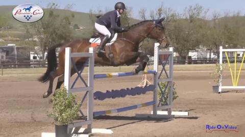 CCI4* Short Show Jumping Twin Rivers Ranch April 2019