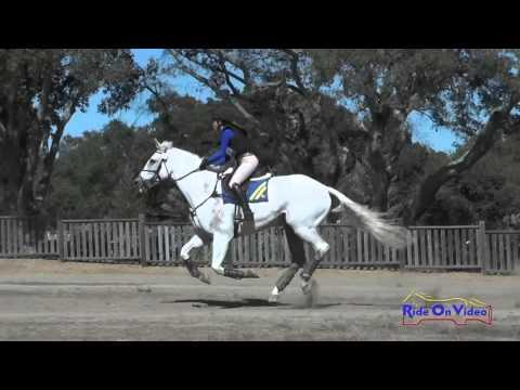 007XC Maddy Mazzola On Mojito CIC3* Cross Country Woodside Oct 2015