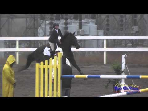 225S Emily Lance On Good Time Charlie Intro Show Jumping FCHP November 2015