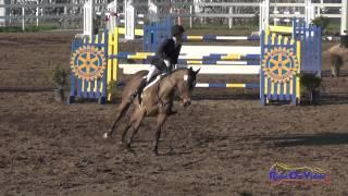 010S Andrea Baxter on Indy 500 CIC2* Show Jumping FCHP February 2015