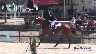 139S Camille Powell on Patrick McLiam Training Horse Show Jumping Woodside August 2014