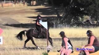 028XC Deborah Rosen on Zuvenir Preliminary Cross Country Woodside August 2014