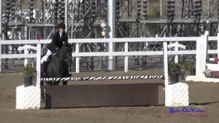090S Lisa Maneggie on Voodoo's Valiant Knight SR Novice Show Jumping FCHP November 2014