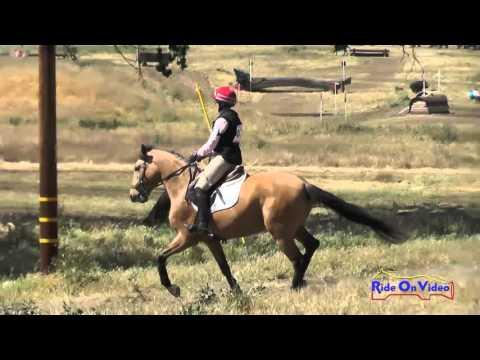 426XC Amber Levine On Connor Open Beginner Novice Cross Country Twin Rivers Ranch April 2016