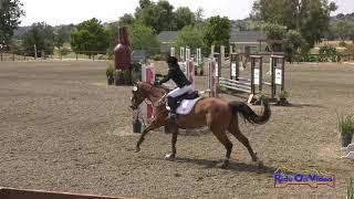 041S Jennifer Barron on Cisco Kid JR Beginner Novice Show Jumping Galway Downs May 2019